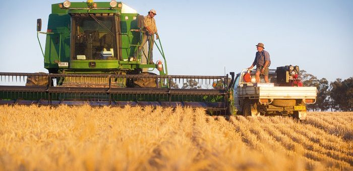 Безпека агробізнесу. Враховуємо людський чинник.